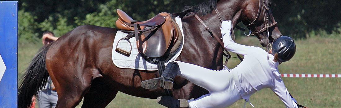 horsefall2